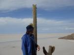 Bolivia matteo cactus salar